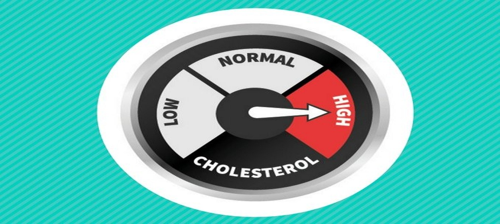 A Helpful Guide to Check Cholesterol Levels in the Blood